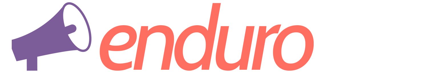 Agência Enduro Logo